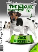 All About Jack Russells