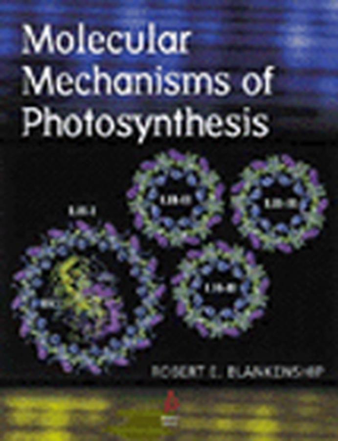 Molecular Mechanisms of Photosynthesis.pdf