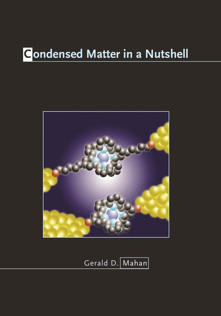 Condensed Matter in a Nutshell.pdf