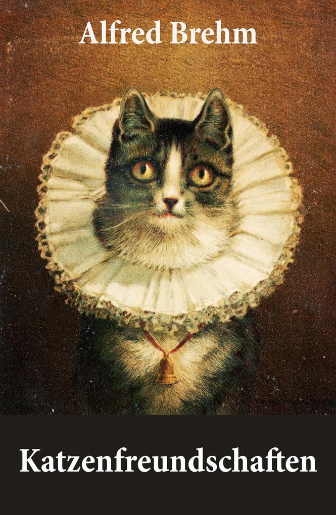 Katzenfreundschaften (4 wunderschöne Katzengeschichten vom Tiervater Alfred Brehm) als eBook epub