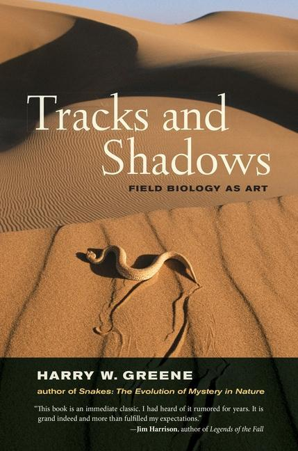 Tracks and Shadows als eBook epub