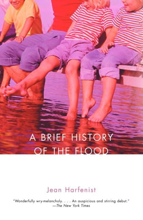 A Brief History of the Flood als eBook epub