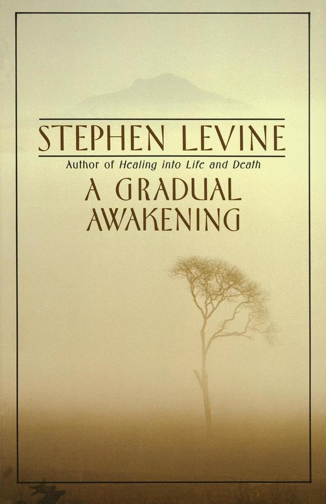 A Gradual Awakening.pdf
