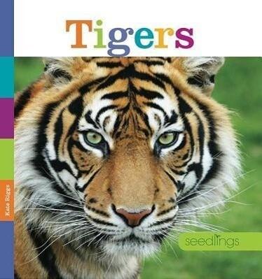 Tigers.pdf