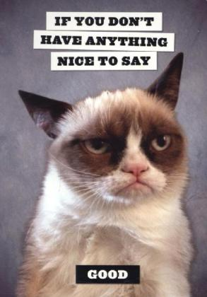 Grumpy Cat Flexi Journal.pdf