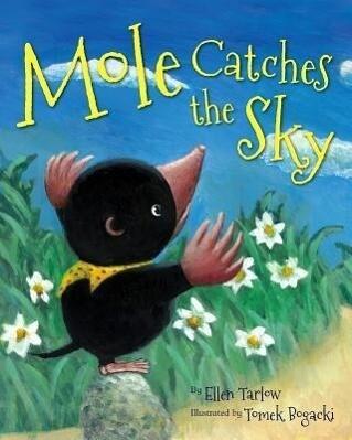 Mole Catches the Sky.pdf