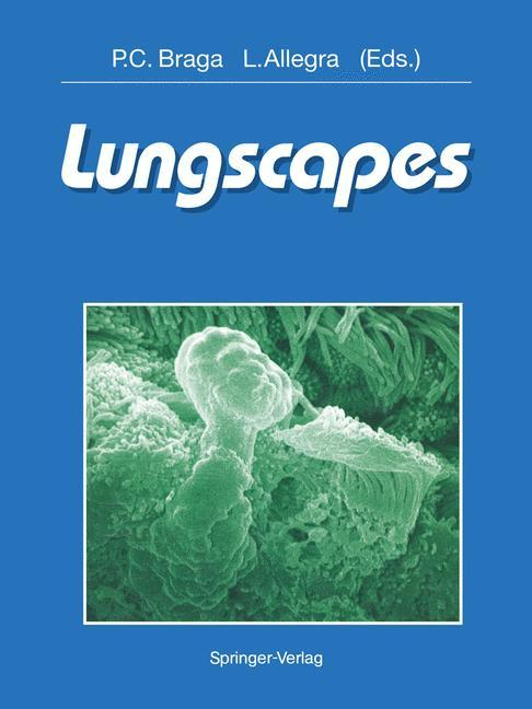 Lungscapes.pdf
