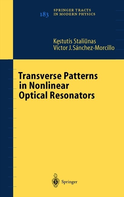 Transverse Patterns in Nonlinear Optical Resonators.pdf