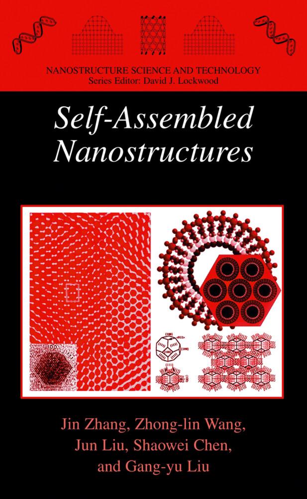 Self-Assembled Nanostructures als Buch (kartoniert)