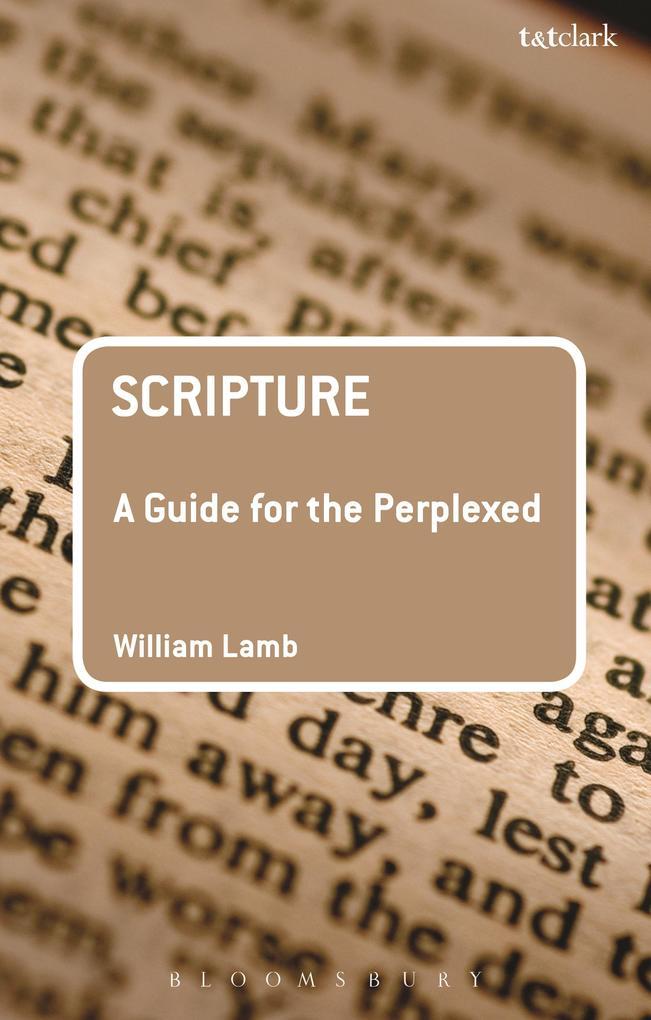 Scripture: A Guide for the Perplexed.pdf