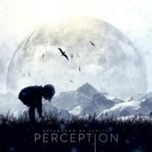 Perception.pdf