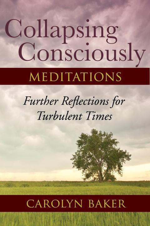 Collapsing Consciously Meditations.pdf