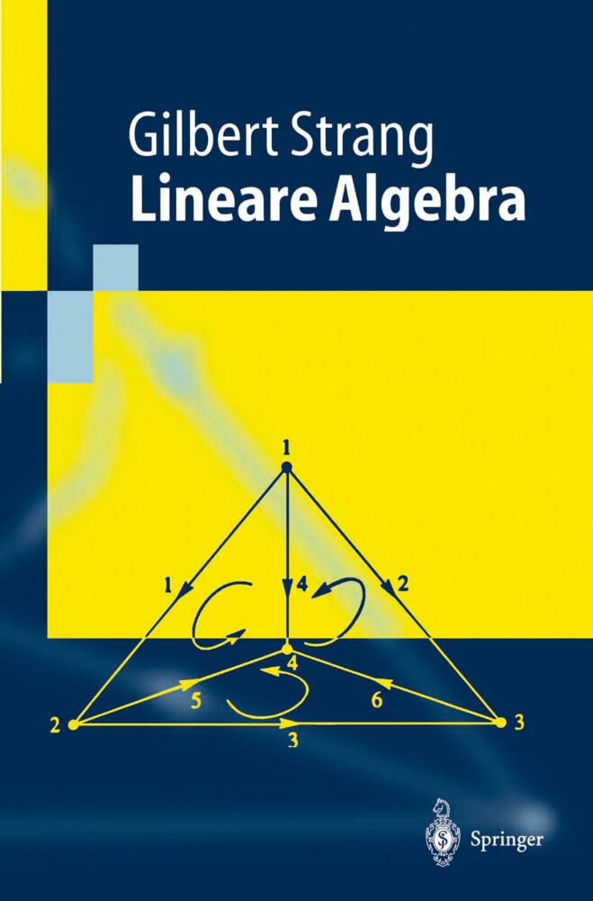 Lineare Algebra als Buch (kartoniert)