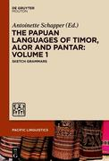 The Papuan Languages of Timor, Alor and Pantar. Volume 1