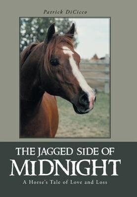 The Jagged Side of Midnight als Buch (gebunden)