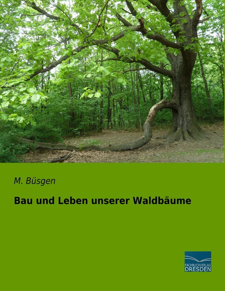 Bau und Leben unserer Waldbäume als Buch (kartoniert)