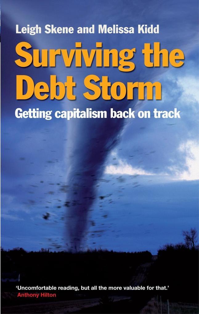Surviving the Debt Storm als eBook epub