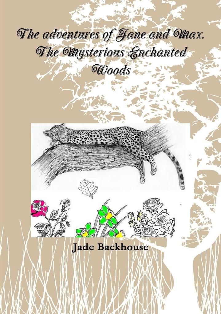The adventures of Jane and Max. The Mysterious Enchanted Woods als Taschenbuch