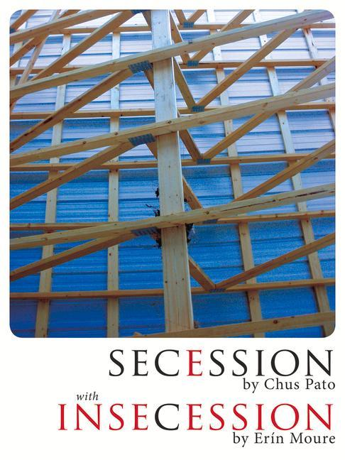 Secession/Insecession als Taschenbuch