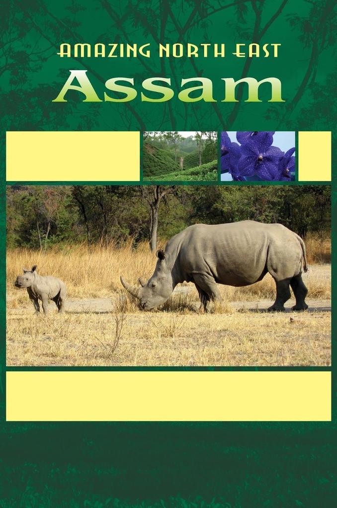 Amazing North East - Assam als Buch (gebunden)
