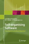 Self-organising Software