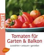 Tomaten für Garten und Balkon