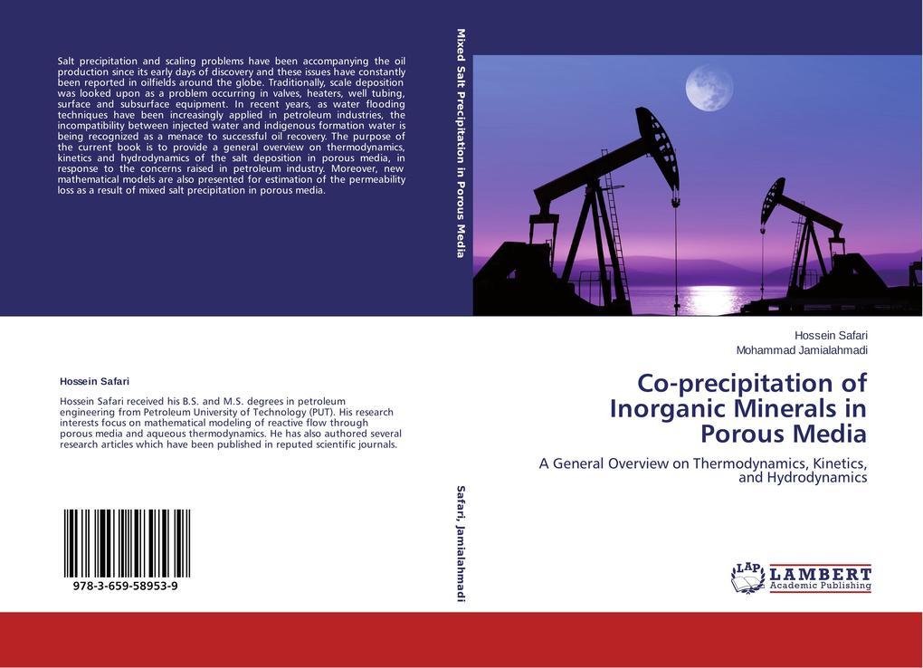 Co-precipitation of Inorganic Minerals in Porous Media als Buch (kartoniert)
