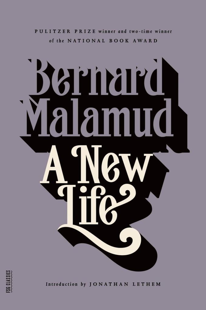 A New Life als eBook epub
