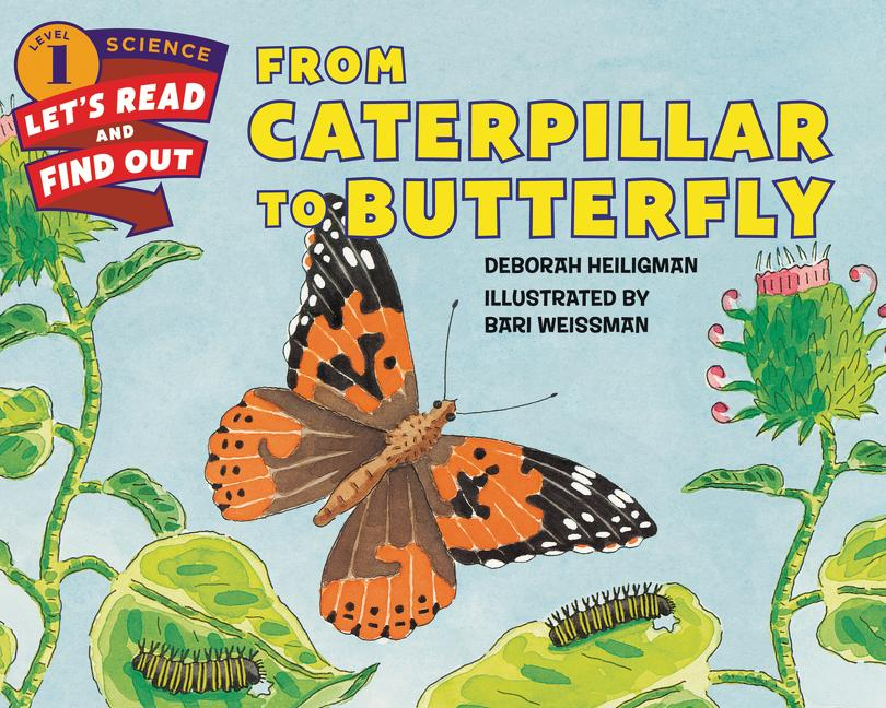 From Caterpillar to Butterfly als Buch (gebunden)