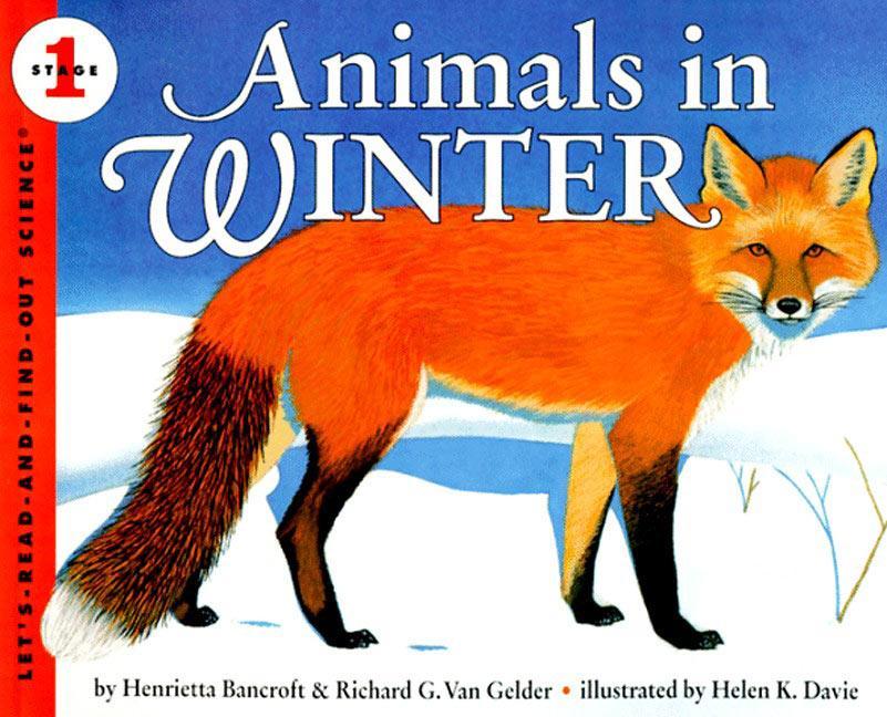 Animals in Winter als Taschenbuch
