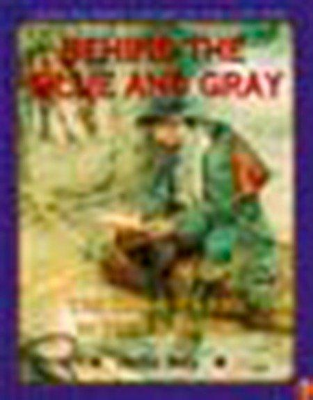 Behind the Blue and Gray: The Soldier's Life in the Civil War als Taschenbuch