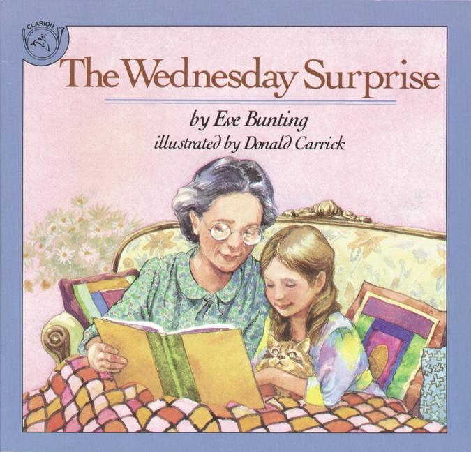 Wednesday Surprise als Taschenbuch