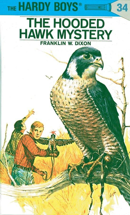 The Hooded Hawk Mystery als Buch (gebunden)