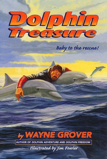 Dolphin Treasure als Taschenbuch