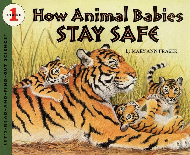 How Animal Babies Stay Safe als Taschenbuch