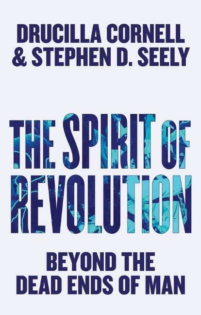 The Spirit of Revolution: Beyond the Dead Ends of Man als Taschenbuch