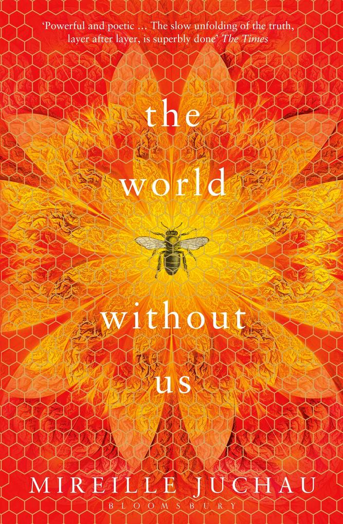 The World Without Us als eBook epub