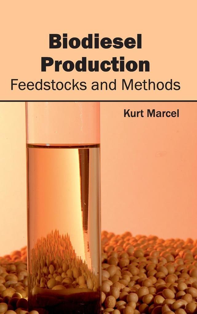 Biodiesel Production als Buch (gebunden)