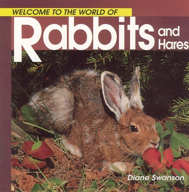 Welcome to the World of Rabbits and Hares als Taschenbuch