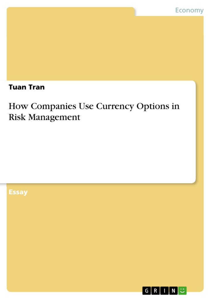 How Companies Use Currency Options in Risk Management als Buch (kartoniert)