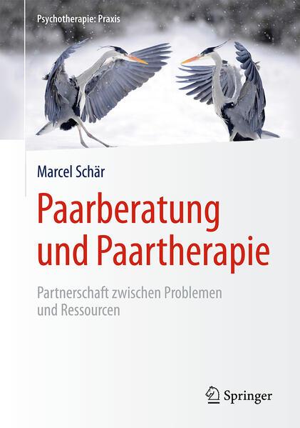 Paarberatung und Paartherapie als Buch (gebunden)
