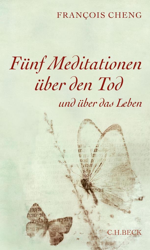 Fünf Meditationen über den Tod als eBook epub