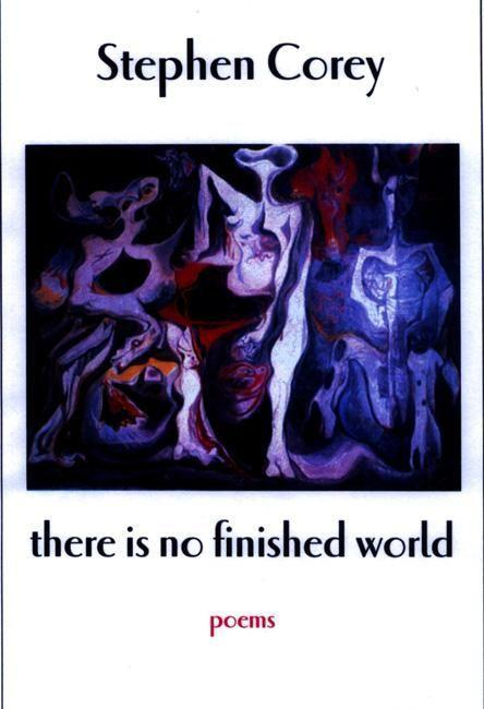 There Is No Finished World als Taschenbuch