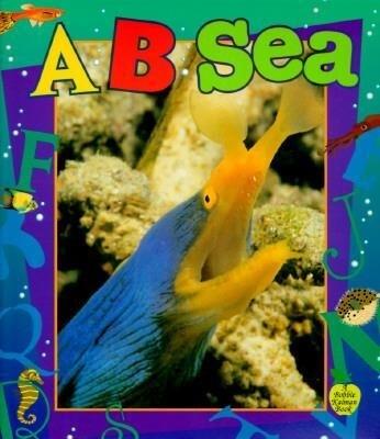 A...B...Sea als Taschenbuch