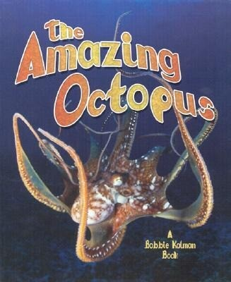 The Amazing Octopus als Buch (gebunden)