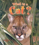 What Is a Cat?