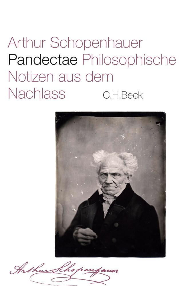 Pandectae als Buch (gebunden)