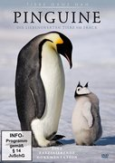 Pinguine, 1 DVD