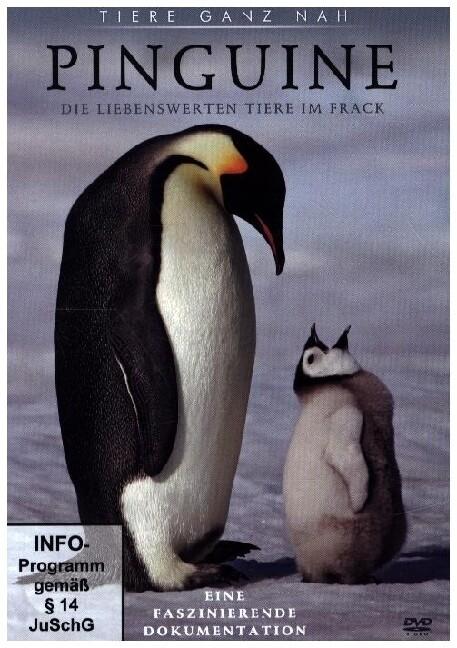 Pinguine, 1 DVD als DVD