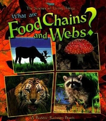 What Are Food Chains and Webs? als Taschenbuch